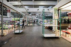 Rungis Halle horticulture
